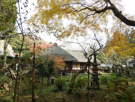 紅葉の、浄智寺書院・客殿と前庭