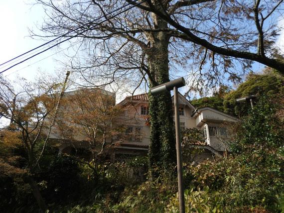 山道から石窯ガーデンテラスをみる