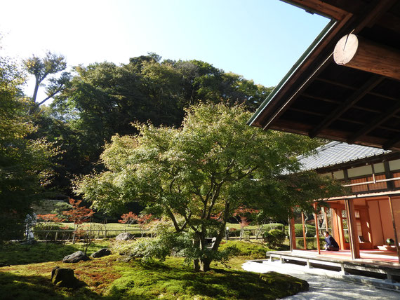 書院から中庭、小方丈を観る
