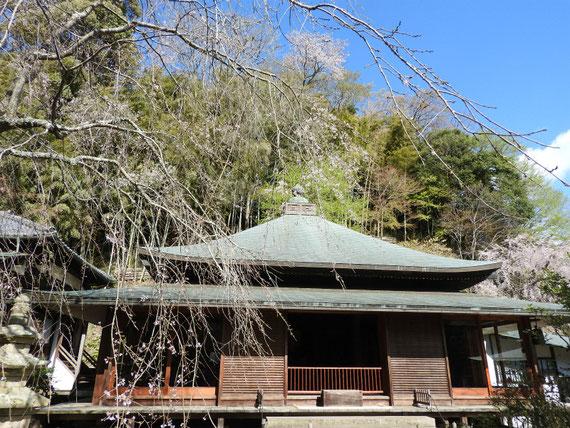 東慶寺本堂(泰平殿) 4月