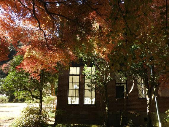 左側面の紅葉と高窓