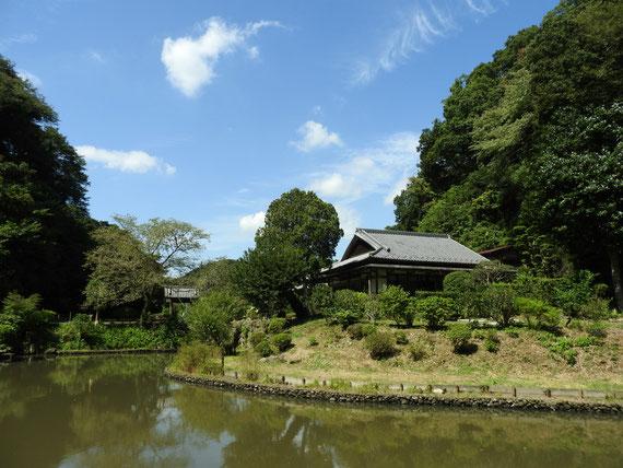 大覚池奥から観る本堂