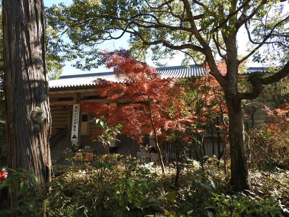 参道入り口から観る鎌倉国宝館