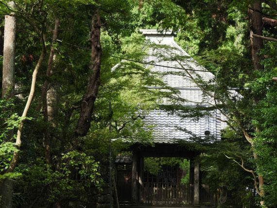 壽福金剛禅寺中門と本堂 10月