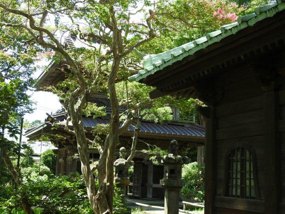仏殿から総門を観る