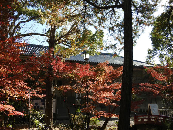 正面左から観る紅葉の鎌倉国宝館