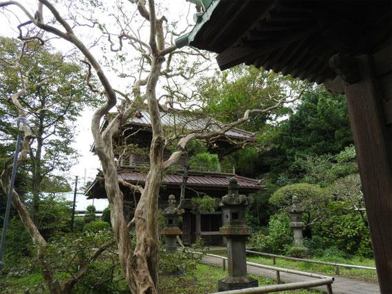 仏殿から総門を望む