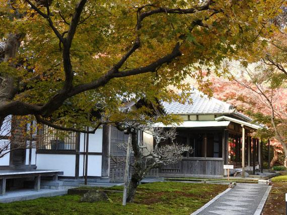 長寿禅寺書院