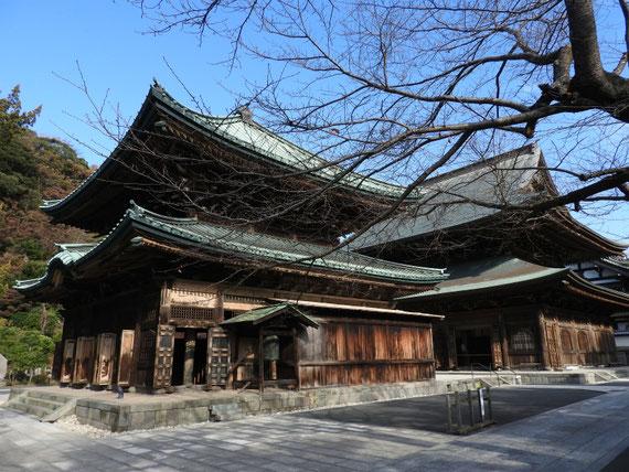 建長寺仏殿と法堂