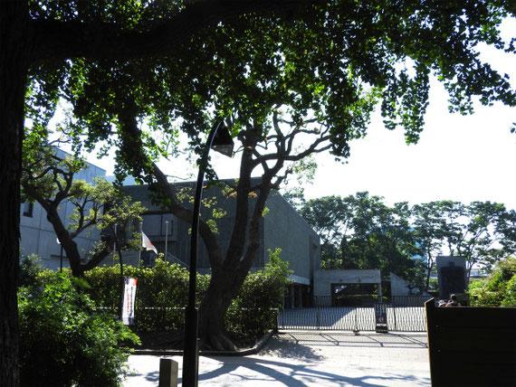 上野公園側の裏門から。 開館前です