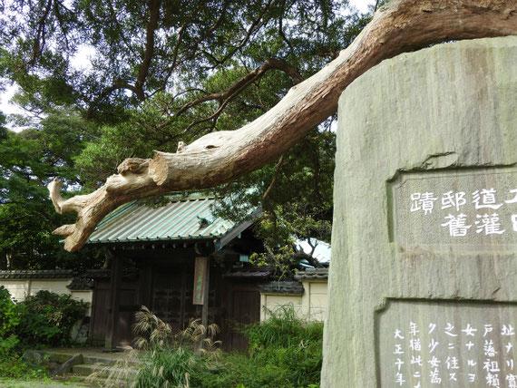道灌邸跡の石碑と山門