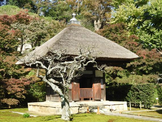 長寿禅寺観音堂 11月