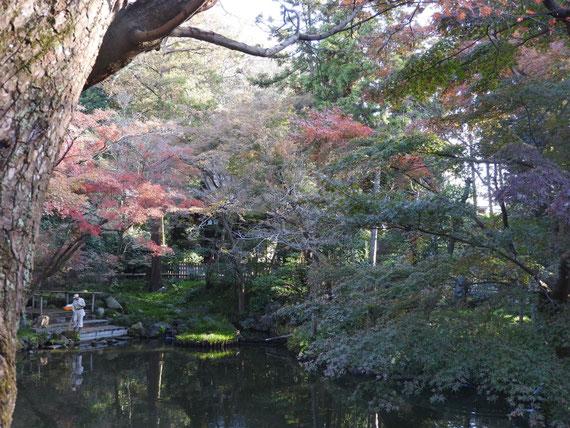 白旗神社横の庭園