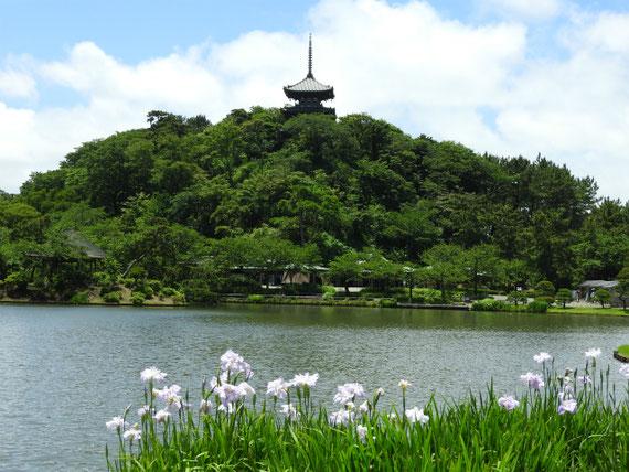大池と三重塔