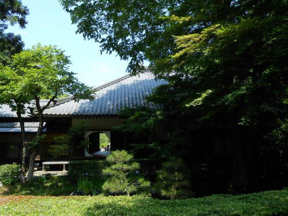 池を望んだ方丈の丸窓、禅寺850年の歴史を感じます