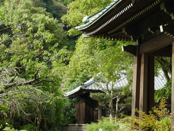 鐘堂と仏殿(薬師堂)