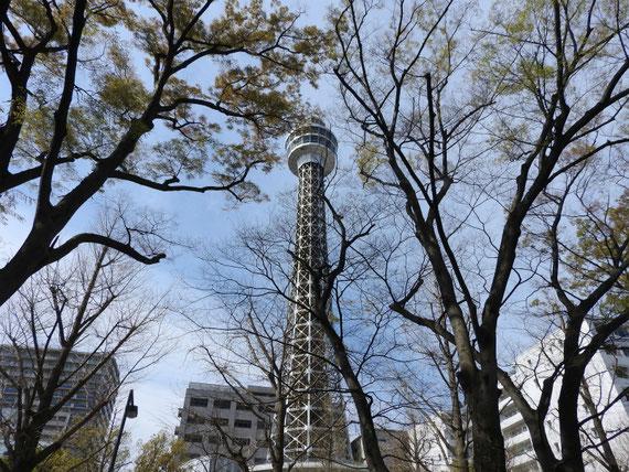山下公園からマリンタワーを望む