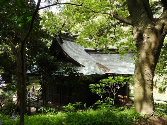 秋葉神社より社殿を望む