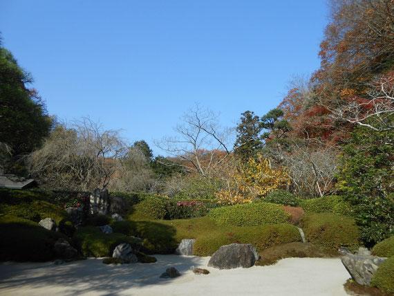 本堂前の枯山水庭園