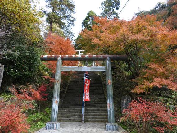 半僧坊への鳥居と紅葉