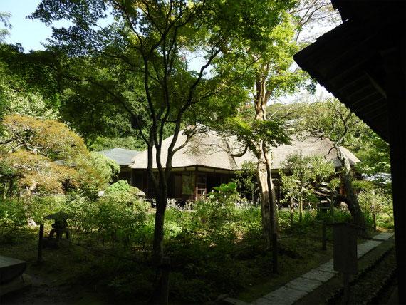 曇華殿裏から方丈・客殿の中庭を望む