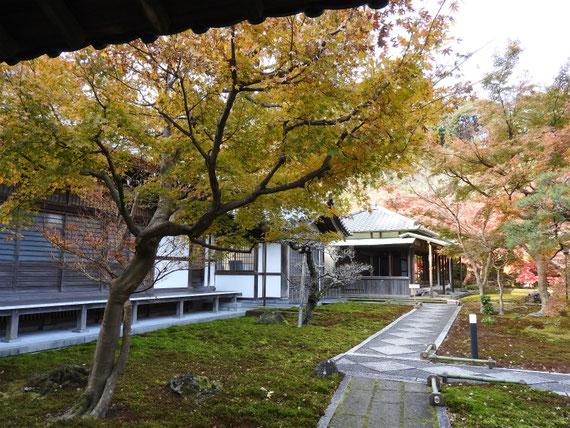 長寿禅寺 本堂と書院