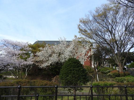霧笛橋から大佛次郎記念館を望む