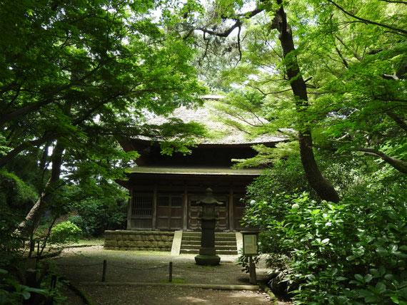 旧東慶寺仏殿(とうけいじぶつでん)江戸時代寛永11(1634)建築