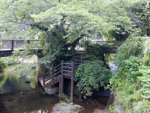鎌倉、報国寺門前にかかる、華の橋