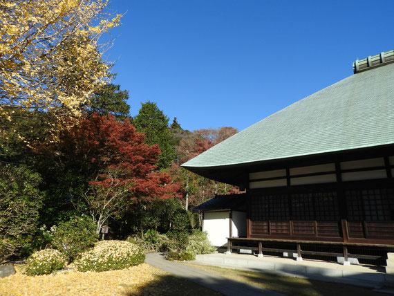 紅葉の本堂