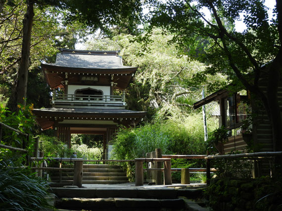 浄智寺鐘楼門 9月