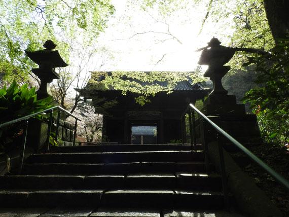 参道の石段から二天門を観る