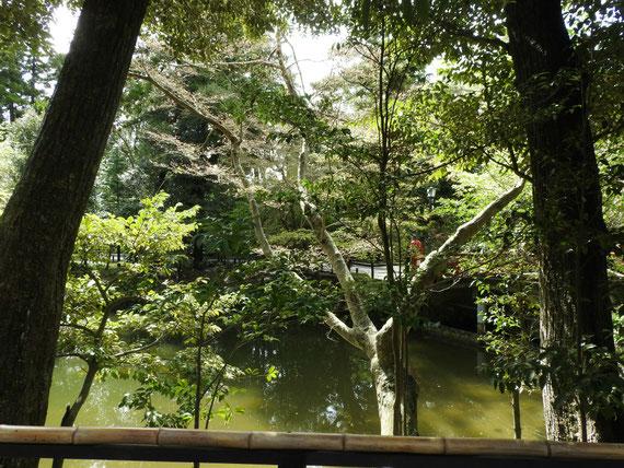 若宮庭園池