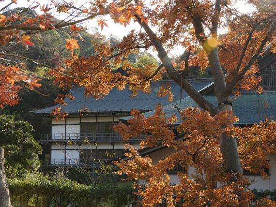 紅葉の方丈と得月楼