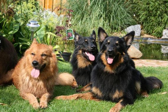 Lara, Iwan und Alf