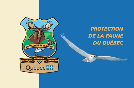 Quebec Wildlife Protection Service Flag