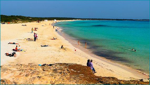 Praia de Es Trenc - Dunas - areia fina - Salinas - Caribe maiorquino