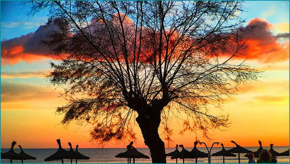 Praia -  Can Pastilla - Balneario 15 -Restaurantes - Bares - Lojas