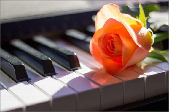 ピアノと花