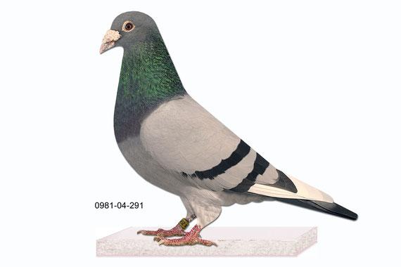 """Bruder vom """"AS 64"""" 0139-02-64 3. AS Vogel national Österreich"""