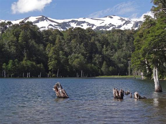 Ein Bergsee auf dem Hochplateau