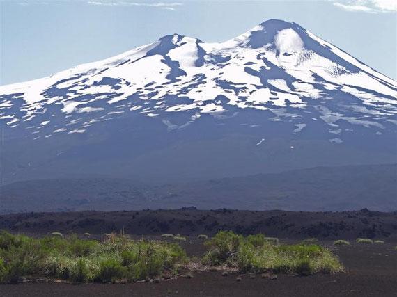 Der Vulkan Llaima, und die erste Vegetation wächst auch wieder seit dem letzten Ausbruch.