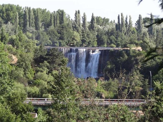 Grünes Kontrastprogramm am Salto del Laja