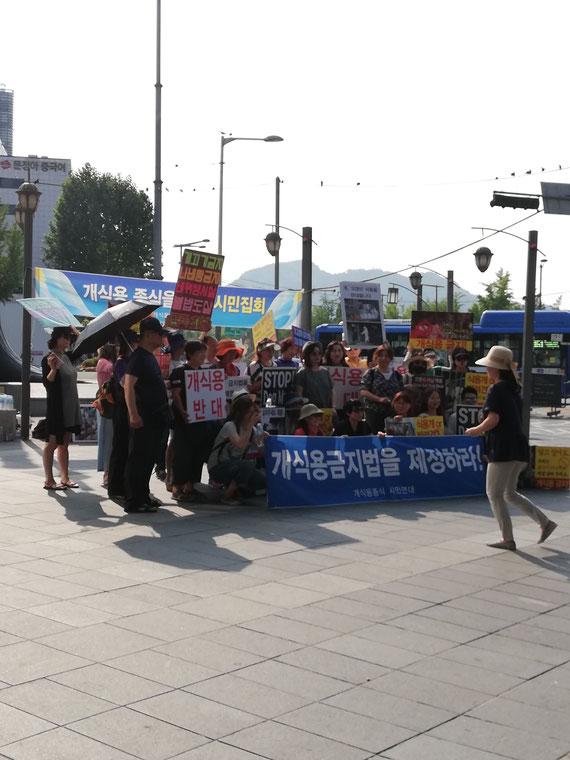 Manifestación en contra del consumo de carne de perro