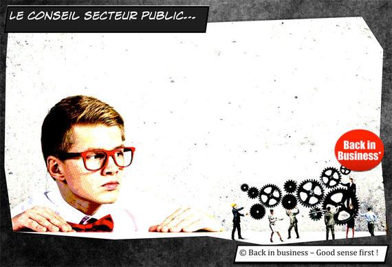 conseil secteur public