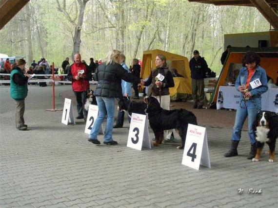 20. April 2008, Bad Lausick