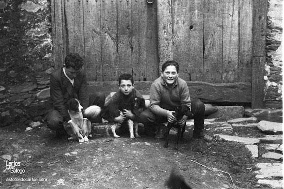 1959-perritos-Carlos-Diaz-Gallego-asfotosdocarlos.com