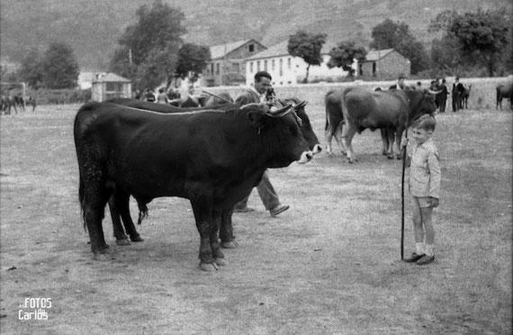 1958-Quiroga-Feria-Ganado-Carlos-Diaz-Gallego-asfotosdocarlos.com
