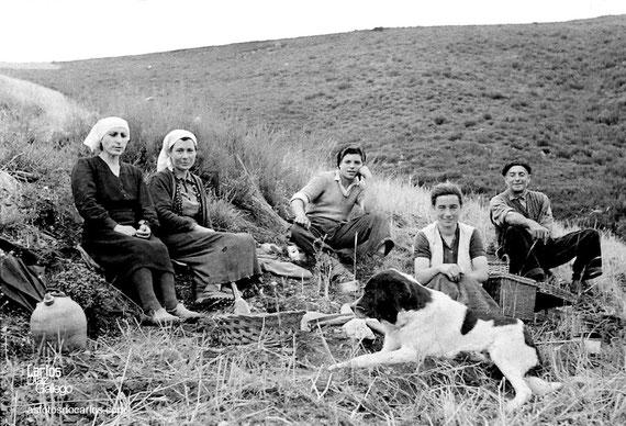 1958-La Hermida-siega-abuelo-nieto-Carlos-Diaz-Gallego-asfotosdocarlos.com