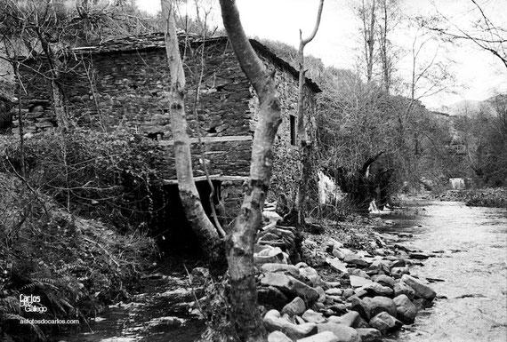 1958-Bergaza-molino1-Carlos-Diaz-Gallego-asfotosdocarlos.com